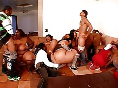 Orgy free naked vids - real bbw tube